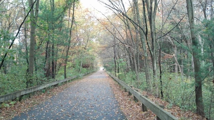 Bike Path 6
