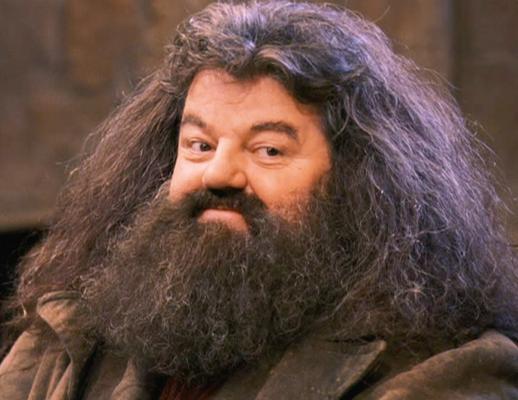 Beard - Hagrid